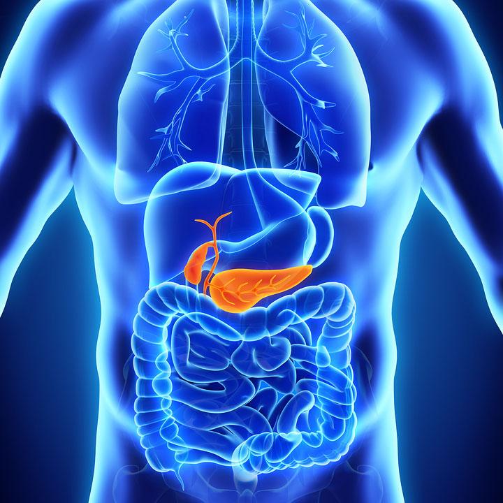 gall bladder ultrasound prep instructions