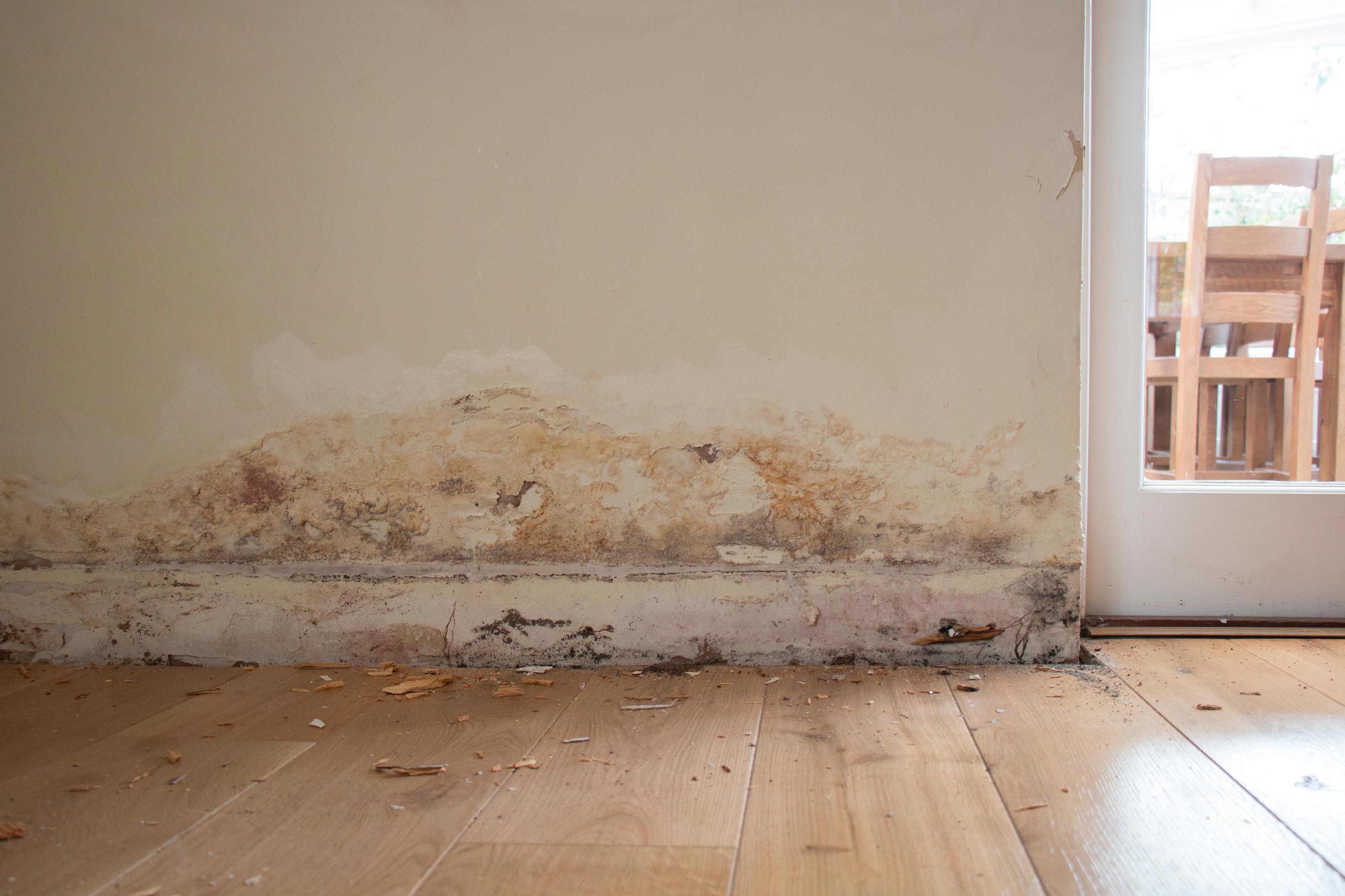 dryzone damp proofing instructions