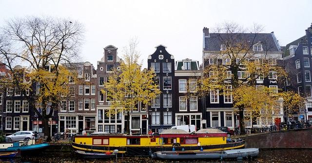 university of amsterdam language of instruction